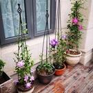 爬藤架子花支架月季花架植物室內花卉支撐桿園藝鐵線蓮爬藤支架桿 夢幻小鎮