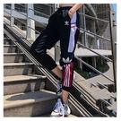 愛迪達 adidas 三葉草 運動褲8210 長褲 運動長褲 慢跑褲 束口褲 經典三槓褲 男女棉褲/澤米