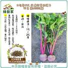 【綠藝家】大包裝C19.福康甜菜根種子5...