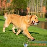 狗狗玩具耐咬幼犬磨牙發聲大型犬寵物玩具鈴鐺球解悶【公主日記】