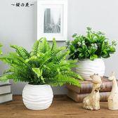 618好康又一發仿真植物仿真綠植套裝擺件