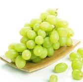 進口綠無籽葡萄1000g