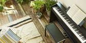 【金聲樂器】CASIO PX-870 黑色 電鋼琴 88鍵