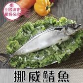 挪威鯖魚1尾(500g/尾)