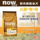 【毛麻吉寵物舖】Now! 鮮肉無穀天然糧 幼犬配方-6磅-狗飼料/WDJ推薦/狗糧