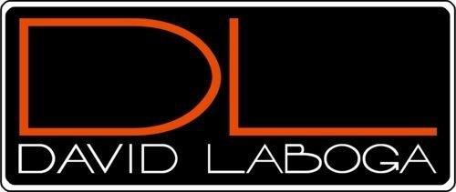 ☆唐尼樂器︵☆終身保固 DL David Laboga Perfection Gold (6米)電吉他導線(一直一L)
