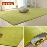 簡約現代絨毛毯臥室滿鋪可愛客廳茶几墊沙發榻榻米床邊地毯可定制