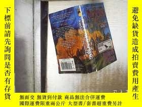 二手書博民逛書店New罕見Spring:The Novel (Wheel of Time) 新春:小說(時間之輪 (02)Y1