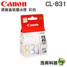 CANON CL-831 原廠墨水匣 盒裝 適用MP145 MP198 MX308 MX318 IP1880 IP1980