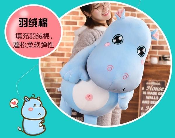 【50公分】可愛河馬玩偶 兒童抱枕 絨毛娃娃 聖誕禮物交換禮物 生日禮物 辦公療癒小物 彌月送禮