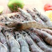 【海鮮主義】活力白蝦 規格6/7,每盒約250g(約15-16隻)(蝦子形體中)