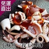 台江漁人港 小魷魚一夜干(250-300g/2尾/包,共二包) EE0280033【免運直出】