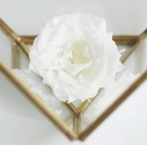 永生花花材,薔薇4-5公分,單朵價