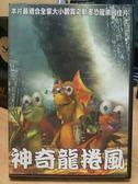 影音專賣店-B14-004-正版DVD*動畫【神奇龍捲風】-適合全家大小觀賞之動畫恐龍樂園佳片