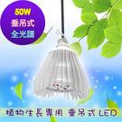 垂直 吊掛式 植物生長燈 推薦  LED 50瓦 50w全光譜吊掛燈