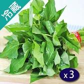 產銷履歷翠綠地瓜葉(250g±5%/包)X3【愛買冷藏】
