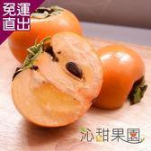沁甜果園SSN 高山甜柿6A禮盒(6粒裝) E00900003【免運直出】