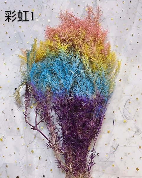 永生花花材,彩虹千層葉,一份10克如圖四
