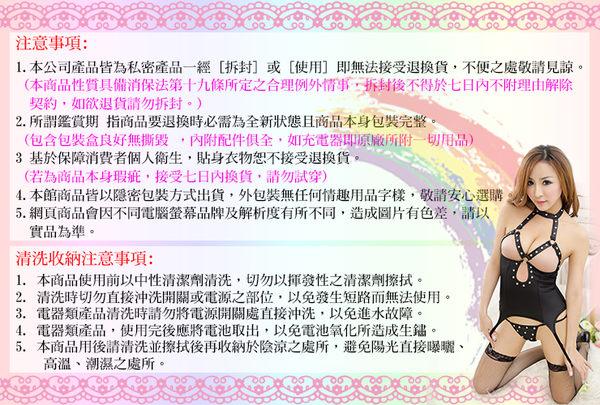 性感貓裝 遇見愛情網狀貓裝 -彩虹情趣用品【390免運,全館86折】