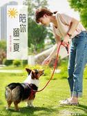 狗狗牽引繩狗錬子泰迪金毛小型中型犬小狗遛狗繩背帶寵物用品 黛尼時尚精品