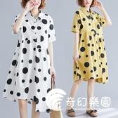 大尺碼洋裝-夏季大碼女裝微胖妹妹洋氣減齡圓點印花連衣裙女個性不規則襯衫裙-奇幻樂園