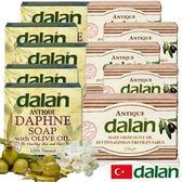 【土耳其dalan】月桂橄欖油手工皂5入+頂級橄欖油手工皂5入