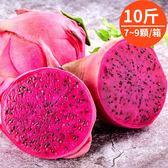 6/15陸續出貨!(374農藥未檢出)蜜妃火龍果·10斤(7~9粒裝)(免運宅配)