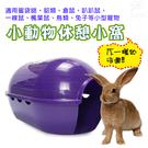 金德恩 比利時製造 LIXIT寵物用品小型寵物休憩遊戲窩