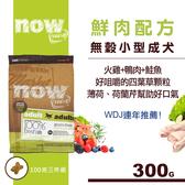 【SofyDOG】Now鮮肉無穀天然糧 小型成犬配方 100克三件組