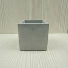 (BEAGLE) 正方型創意水泥盆栽 多...