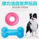 狗狗玩具發聲球耐咬拉布拉多金毛的大狗寵物大型犬小泰迪磨牙骨頭 moon衣櫥