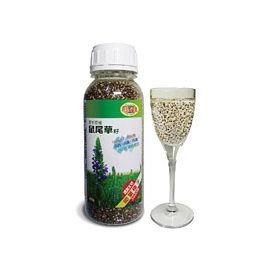 亞積  CHIA SEED野生原種鼠尾草籽 430g/瓶   24瓶團購優惠價