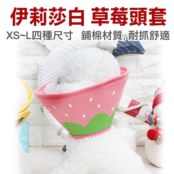☆伊莉莎白.草莓舖棉頭套【XS號】,耐抓布材質 防舔咬,狗燈罩,寵物燈罩