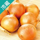 洋蔥(產銷履歷)1KG/袋【愛買冷藏】