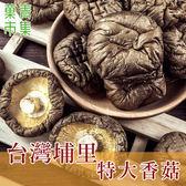 臺灣埔里特大香菇 300G 【菓青市集】