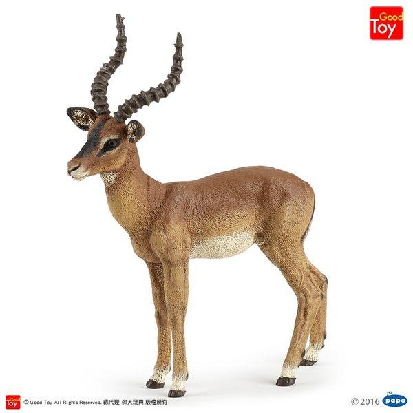 【Good Toy】法國 PAPO 50186 野生動物 黑斑羚 Impala