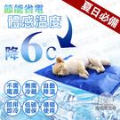 冰墊 M號貓狗冰墊 人寵降溫 筆電散熱 涼墊 寵物冰墊 降溫 散熱 狗窩 貓床 夏季 涼感