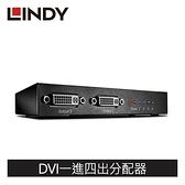 LINDY林帝 DVI SINGLE LINK 一進四出影像分配器
