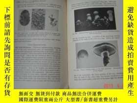 二手書博民逛書店A罕見TEXTBOOK OF GENERAL BOTANY【19
