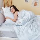 床包兩用被組 / 雙人加大【芯悅香鈴】含兩件枕套 60支天絲 戀家小舖台灣製AAU315