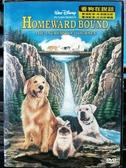 挖寶二手片-P09-067-正版DVD-電影【看狗在說話1】-回到未來-米高福克斯配音(直購價)經典片 海報是