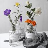北歐ins風格小花瓶水培透明玻璃鮮花插花瓶家居擺設拍攝道具BLSJ