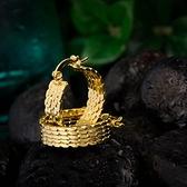 耳環 純銀鍍18K金-氣質簡約生日情人節禮物女飾品73cx14【時尚巴黎】