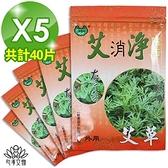 【南紡購物中心】【心海文物】艾草清涼貼布5包40片(SH-0011)