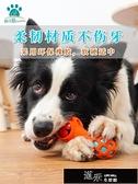狗狗玩具寵物小狗耐咬幼犬柯基泰迪益智力漏食解悶發聲玩具  【全館免運】