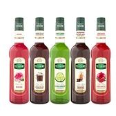 Teisseire 糖漿果露- 法國頂級天然糖漿 700ml 荔枝 巧克力 蘋果 草莓 玫瑰 藍柑橘 西瓜 任選一 -良鎂