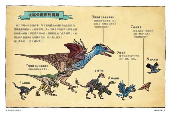 達克比辦案(6):暴龍遇到雞