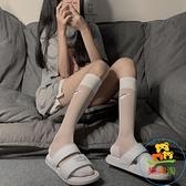 長襪小腿襪女薄款冰絲透明中筒襪潮運動天鵝絨高筒襪 樂淘淘