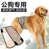 狗狗生理褲大型犬寵物防交配衛生褲公狗禮貌帶【時尚大衣櫥】