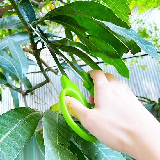 園藝剪刀 剪刀 修枝剪 牙切剪 農業剪 樹枝剪刀 不鏽鋼 粗枝剪刀 加長型 植物修枝剪【Q169】慢思行